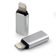 USB-C naar Lightning adapter zilvergrijs